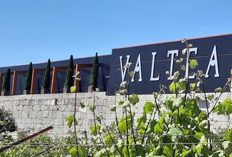 Adegas Valtea